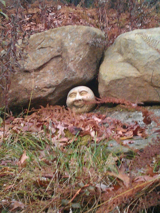 My Happy Garden Spirit. I always thought it looked like Jackie Gleason's Man In The Moon face.